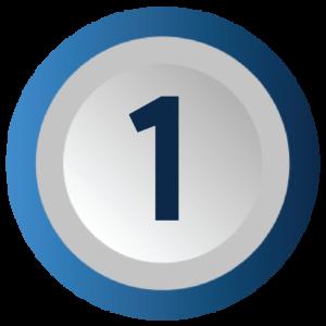 Bonafide IP4-01
